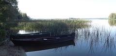 Rubikiai Lake 25 (rimasjank) Tags: lake boat morning reed landscape