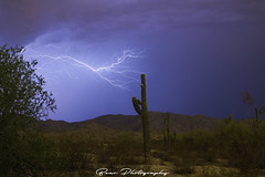 The claw (AZ Bear Photography) Tags: landscape lightning storm cloud blue sky arizona desert green tree plant saguaro mountain hill dirt field