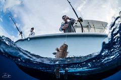 Gulf Fishing Trip (J.Coffman Photography) Tags: action sport florida dropping deep mexico gulf ocean fisheye under over fishing boat people sea sky water