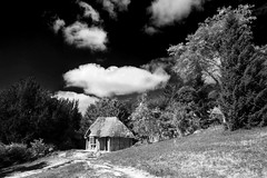 The Bear's Hut (Christian Hacker) Tags: killerton nationaltrust broadclyst exeter devon england uk blackandwhite bw mono monochrome garden bearshut summerhouse timber puffyclouds trees path way canon eos50d tamron 1750mm landscape architecture historic old contrasty contrast dramatic thatchedroof