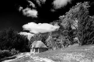 The Bear's Hut