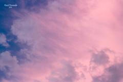 Pink sunsent (dividfernandez) Tags: dramaticsky sun moodysky sunset dusk dawn stratosphere sunbean twiligt solarflare pink blue sky clouds skyline