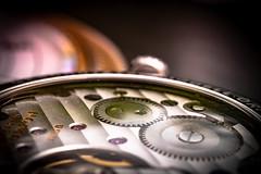 Cogwheel (Of Light & Lenses) Tags: macromonday cogwheel zahnräder uhr uhrwerk movement mechanical suncutting sonnenschliff decorated clockwork wristwatch