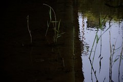 DSC_5134 (satooooone) Tags: nikon d750 snap landscape 風景