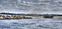 The Watchers And The Watched (nigdawphotography) Tags: seal seals boat boattrip blakeneypoint norfolk
