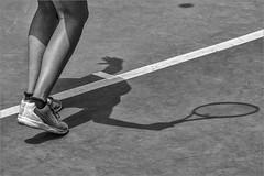 Al servei!!!..., _DSC2322_D500_Els Gorchs (Francesc //*//) Tags: bn blancinegre blackandwhite noiretblanc tennis esport deporte ombres ombra sombra shadow lombre