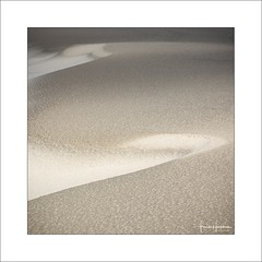 Sandscape I (Frank Hoogeboom) Tags: wadden netherlands holland terschelling nederland beach lines sand sandscape landscape island abstract color dunes square fineart light natural nature
