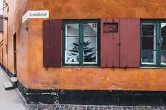 Krokodillegade, Nyboder (nachomaans) Tags: vert fuji xt20 copenhagen denmark dk house architecture cobblestones owl fan window tree steps crocodile nyboder