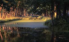 Evening Light (keesvandongen) Tags: summer evening forest sunset sunrise channel water