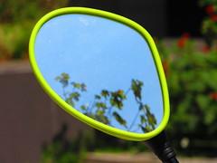 (anaritaperalta) Tags: reflexo árvore espelho retrovisor