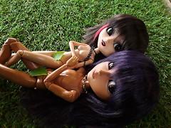 Nudistas! - comparativa de tonos (Lunalila1) Tags: doll groove junplaning mocha black pullip catwiman taeyang sol nude comparison skin tono