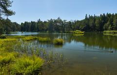 Möserer See - Tirol (Ernst_P.) Tags: aut möserersee mösern österreich tirol sony zeiss distagon 24mm f20 polfilter ente duck pato tyrol austria autriche landscape paisaje lago lake water agua aqua