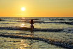 Die Schönheit der Natur (ploh1) Tags: frau mensch person jungefrau meer wasser sonne sommer sonnenuntergang wellen niederlande holland nordsee scheveningen gegenlicht natur landschaft himmel thehague denhaag