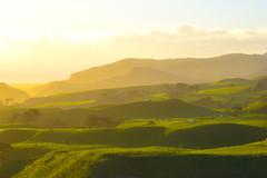 Manukau Heads Lighthouse (James0Harris) Tags: green rolling hills lighthouse heads manukau grass landscape sky road field manukauheads newzealand nz