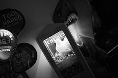 (noir imp) Tags: ricoh noir scary fun trex dinosaur monochrome game chicken arcade