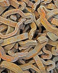 Rusted Railroad Snakes (WhiPix) Tags: buckscounty railroad steel snakes rust 62522 buckiingham