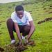 Mau Forest Restoration