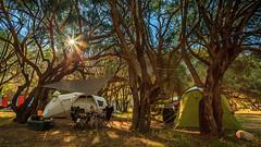 corsica 4th #6 (Eugeniusz71) Tags: porto portodeota ota camp camping tent trees awning tarp sunrise corsica