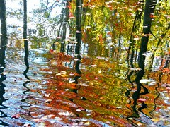 Autumn Water Ripples (Stanley Zimny (Thank You for 32 Million views)) Tags: autumn fall landscape reflection color harriman park lake water abstract ripples colors