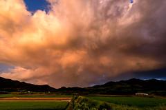 雨後の青空ー Blue sky after the rain (kurumaebi) Tags: yamaguchi 秋穂 山口市 nikon d750 nature landscape 雲 cloud summer 夏 田んぼ 田 sky 空 dusk
