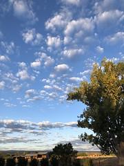 Sunrise Montrose (Chuckcars) Tags: blue middle sky sunrise undulatus altocumulus clouds montrose colorado