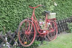 Rotes Fahrrad (Maxi1000100) Tags: rot fahrrad blum