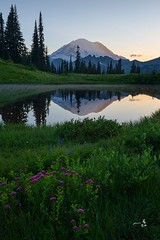 Rainier reflections (gmacfly) Tags: heliconfocus stacking blend focus beautiful outdoors explore sunset summer wildflowers nature northwest pacific mount mountains rainier