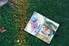 Vincigliata, Agosto 2018 (Shirley Ruby) Tags: vincigliata chateau castle firenze florence italie italy italia city ville dolce vita dolcevita viedechateau poesie poetry travel voyage photo sony portrait paysage landscape fleurs flower oldcastle middleage porcospino herisson remparts boy guitare guitar girl beautiful mur personnes horloge sur la argentic argenticphoto argenticphotography argenticminolta minolta minoltaxg1 pelouse jardin