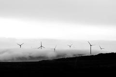 Misty Windmils (CJH Natural) Tags: landscape windmills bw mood mist wind