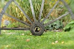 Red River Cart Wheel (mike_hoyt_ca) Tags: lensbaby redrivercart woodenwheel edmonton