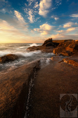 Halibut Point (Justin Smith - Photography) Tags: halibutpoint rockportmamassachusettsnew englandsunsetoceanrocksnikon d800nikon 1735mm f28justin smith