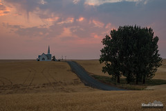 The Road to Church (kevin-palmer) Tags: davenport washington august summer smoky evening sunset church zionunitedmethodist steeple wheat field gold golden farmland red orange road tree building tamron2470mmf28 nikond750 color colorful rolling hills