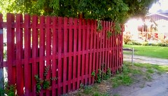 Neighborhood fence - HFF (Maenette1) Tags: neighborhood fence alley tree menominee uppermichigan happyfencefriday flicker365 allthingsmichigan absolutemichigan projectmichigan