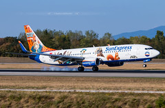 "TC-SNY Boeing 737-800 SunExpress ""Peter Hase (Peter Rabbit Movie)"" (Stephane GolfTraveller) Tags: tcsny boeing 737800 sunexpress peterhase peterrabbitmovie bsl mlh euroairport basel mulhouse flughafen lfsb aeroport airport planespotting ©stephanegolftraveller canon sky plan grass panning"