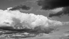 Late summer clouds (frankdorgathen) Tags: alpha6000 sony sony35mm schwarzweiss schwarzweis monochrome blackandwhite ruhrpott ruhrgebiet werden essen sommer summer natur nature himmel sky wolken clouds