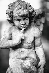 But For Now Love, Let's Be Real (Thomas Hawk) Tags: america bayarea california eastbay mountainviewcemetery oakland usa unitedstates unitedstatesofamerica westcoast angel bw cemetery sculpture us fav10