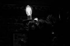 A glimpse of light 💡 (LUMEN SCRIPT) Tags: filmnoir france clairobscur shadow light moreblackthanwhite black blackandwhite monochrome lowkey