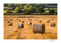 Sunset Bales (George-Edwards) Tags: landscape summer sunset hay straw bales harvest crop field farm land wheat barley golden sun light shadow evening vale valley hilltop trees countryside rural outdoor river pang wessex england idyllic bucklebury village georgeedwards 2018 seasons northwessexdowns aonb corn footpath scenic berkshire