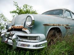 Old School Pontiac (MaxMcKinney) Tags: vintage car junk yard grass growing abandon brown blue patina