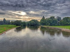 A stunning sunrise!😊 (LeanneHall3 :-)) Tags: sunrise lake ducks flyingducks coot green grass leaves trees grey white clouds talkativeclouds cloudsstormssunsetssunrises sky skyscape sun reflection landscape samsung groupenuagesetciel hdr