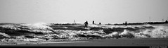 20170101_15 Surfer out among the waves | Rockaway Park, New York City (ratexla) Tags: ratexlasnewyorktrip2016 newyorkcity 1jan2017 2017 canonpowershotsx50hs nyc newyork usa theus unitedstates theunitedstates america northamerica nordamerika earth tellus photophotospicturepicturesimageimagesfotofotonbildbilder wanderlust winter travel travelling traveling journey vacation holiday semester resaresor urban city town storstad storstäder storstadssemester newyearsday ontheroad rockawaypark rockawaybeach beach beaches strand stränder sandy sandstrand sand bw blackandwhite blackwhite monochrome svartvitt svartvita svartvit wave waves water ocean marine sea hav havet surfing surfer surfers drysuit watersport watersports sport sports person people human humans homosapiens favorite