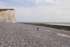 IMG_2732 (Serafima Telkanova) Tags: sevensisters uk eastborn eastdean sky beach water rock sea