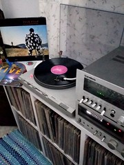 """Pink Floyd. Delicate Sound of Thunder (1988/CBS/Brazil)   """"So, so you think you can tell Heaven from hell Blue skies from pain Can you tell a green field From a cold steel rail? A smile from a veil? Do you think you can tell?...""""  (Wish You Were Here)  #v (Edosoutros) Tags: inch audiophile studio minimaltechno vinylgram vinyligclub producer electronicmusic nice gt gradiente vinylcollectionpost deephouse funk recordjunkie soul feature nyc musiclovers soundcloud ableton instagood electronica vinyls love vinylrecords musiclover pop jazz design"""