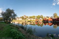 Sunday Walk (aixcracker) Tags: nikond500 samyang 8mm f35 borgå finland porvoo suomi autumn höst syksy september syyskuu bluesky blåhimmel sininentaivas afternoon eftermiddag iltapäivä sunshine solsken auringonpaiste europe europa eurooppa