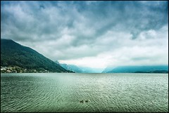 Traunsee on a rainy day (TheOtherPerspective78) Tags: traunsee gmunden austria lake water surface ducks weather clouds sky rainclouds cloudscape cloudy rainy rain landscape landschaft see enten wetter wolken outdoors mountains mountainrange travel theotherperspective78 canon eosm6