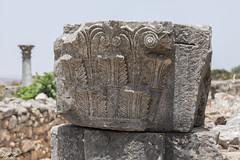 2018/07/09 12h53 ruines de Volubilis (Valéry Hugotte) Tags: 24105 antiquité maroc volubilis canon canon5d canon5dmarkiv romain ruines stèle fèsmeknès ma