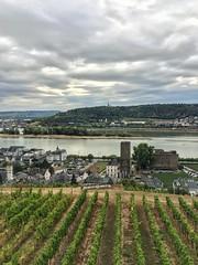 Rüdesheim (marfis75) Tags: rüdesheim rhein stadt seilbahn wein weinberg vine reben city cityview scape green wolkig tag day marfis75 creativecommons cc