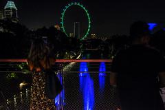 Gardens by the Bay XX (emptyseas) Tags: gardens by bay singapore emptyseas nikon d800 ella flyer