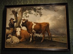 The Young Bull (M_Strasser) Tags: mauritshuis olympus olympusomdem1 holland netherlands