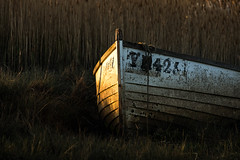 Last Light (merseamillsy) Tags: grass shadow wooden water boats mersea marsh reeds coastline lost forgotten coastal abandoned sea seascape dinghy coast merseaisland sunlight